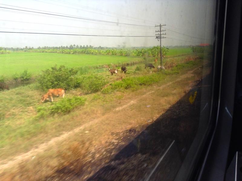 タイ国鉄の車窓