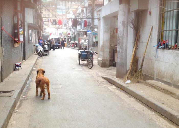 上海の裏道