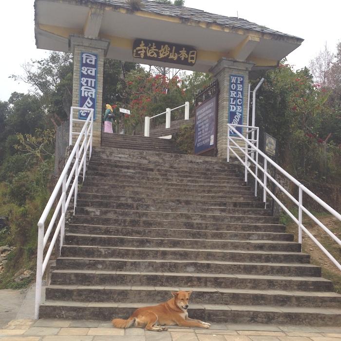 日本山妙法寺の門