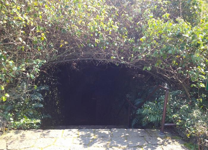 ハルリム公園